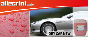 Allegrini dry car new ar-1